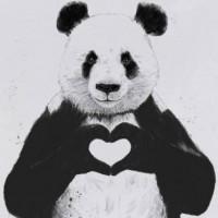 Karady Beatz Profile Picture