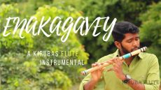 Enakagavey – Flute Instrumental